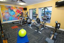 Brand new fitness center.